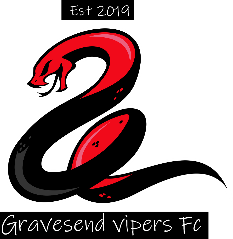 Gravesend Vipers FC